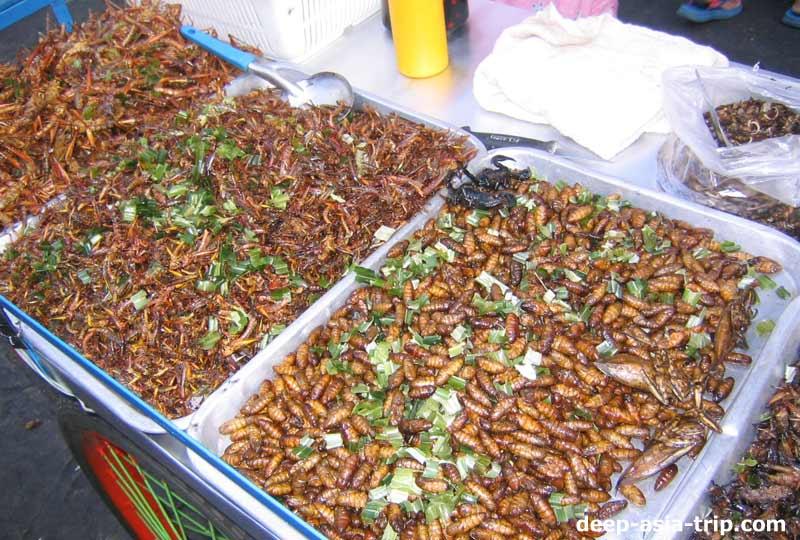 屋台で売ってる昆虫